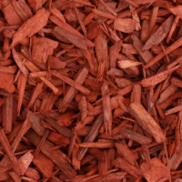 Red Pine Bark  ✅ Suits well with modern gardens✅ Adds bright colour to your garden